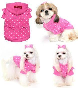 quần áo thú cưng