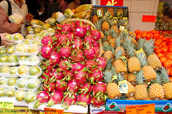 Hoa quả xuất khẩu